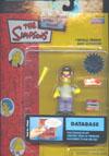 database(t).jpg