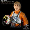 Luke Skywalker in X-wing Pilot Gear Mini Bust (Gentle Giant Ltd.)