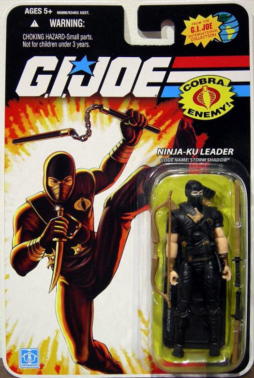 Ninja-Ku Leader Code Name- Storm Shadow